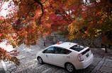 タクシーに乗って紅葉へ。