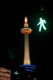 ちょっくら…towerへ。