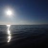 湖国散策 (8)