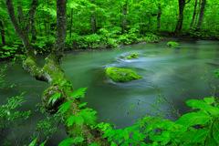 Beautiful river...