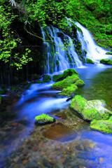 Beautiful nature...