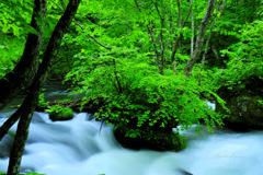 Brilliant green...