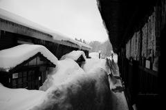 Snow landscape...