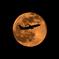 2016/05/22 Moon-shoot