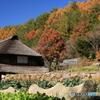 山里の秋 -T