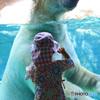 シロクマさん、大きいね! -T