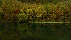 Autumn color pond