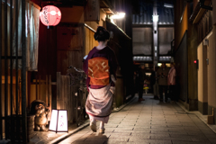 The gion night