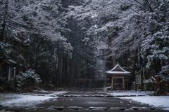 Quiet sanctuary