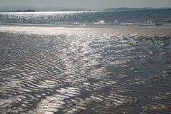 波間の模様に季節感感じ