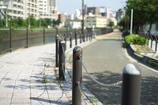 川辺の歩道