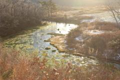 晩秋のグダリ沼