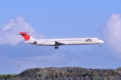 これも退役した機体JAL MD-90・・