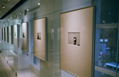 The Gallery...