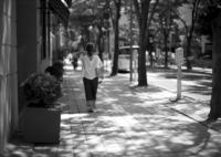 LEICA LEICA M (Typ 240)で撮影した(夏日)の写真(画像)