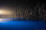 青い池 妖艶