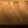 Misty September 14 光芒