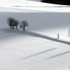 Monochromatic Winter