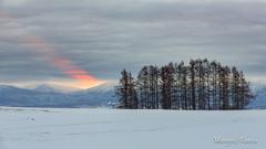 初冬の光芒