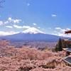 忠霊塔、桜 富士山