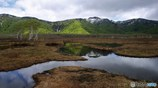 池塘のある風景