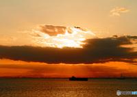 CANON Canon EOS 7Dで撮影した(旅立ち)の写真(画像)