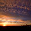 AM7:42 Toronto Sky