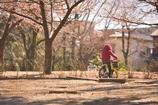 自転車こいで公園へ行こう