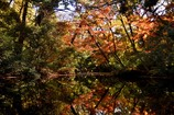 過ぎ行く秋の日