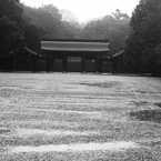 雨の橿原神宮 Ⅲ