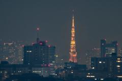 東京タワー(生田から)