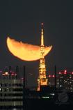 月と東京タワー2