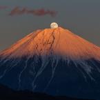 CANON Canon EOS 6Dで撮影した(紅富士パール 2014/12/5)の写真(画像)
