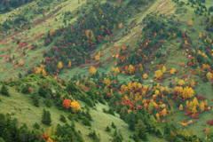 秋は山上から