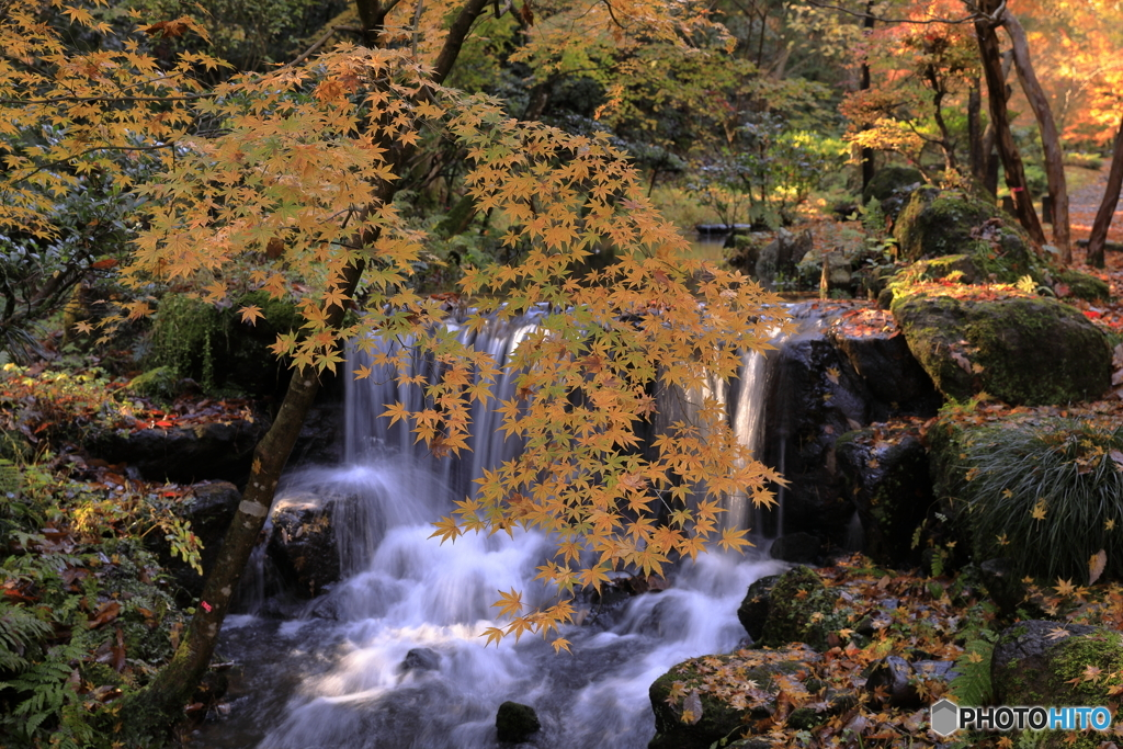 赤坂山公園-5