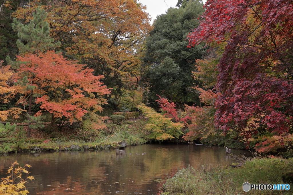 赤坂山公園-3