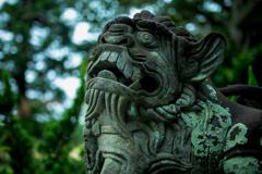 宮古の狛犬