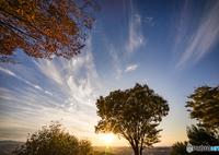 SONY ILCE-7で撮影した(紅葉と秋の空<3>)の写真(画像)