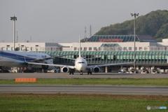 松山空港 ⑥ JAL JA340J 737