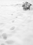 冬のBreak time