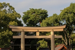 明治神宮 新築の鳥居