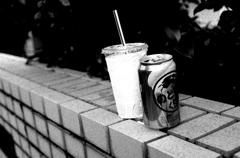 Tokyo868-本町 『Don't throw!』