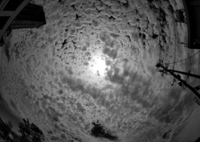 RICOH IMAGING PENTAX K-1で撮影した(見上げた空は・・・)の写真(画像)