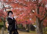 秋色を愛でる【祇園甲部 つる葉さん】