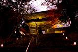 洛秋の宴【神護寺 その5】