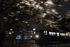「SAKURA TRAIN」