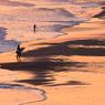 「渚とサーファー」