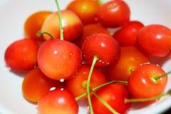 さくらんぼ&ミニトマト