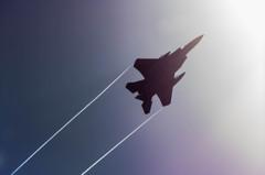 F-15J 主力戦闘機(要撃機)  4/9