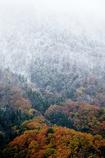 紅葉雪景Snap*1